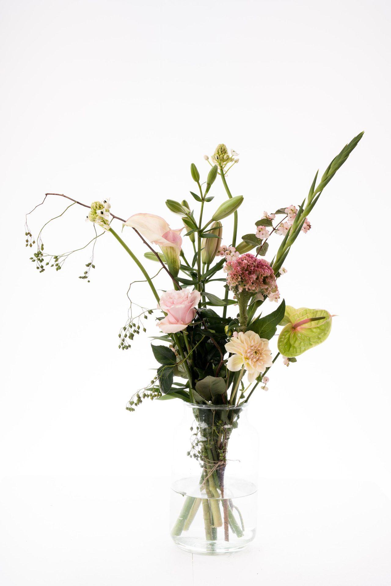 bloom janine