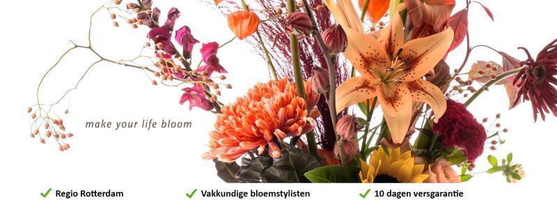 Bloemen Rotterdam