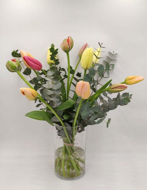 tulpen bloemen rotterdam